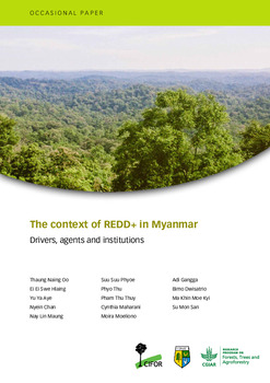 The context of REDD+ in Myanmar [sumber elektronis] : drivers, agents and institutions