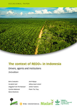 The context of REDD+ in Indonesia [sumber elektronis] : drivers, agents and institutions