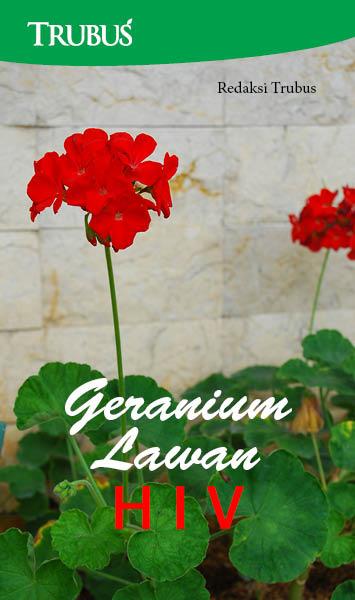 Geranium lawan HIV [sumber elektronis]