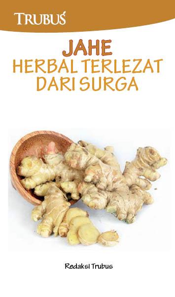 Jahe herbal terlezat dari surga [sumber elektronis]