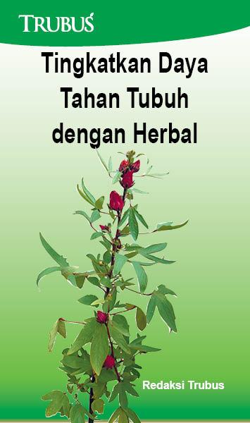 Tingkatkan daya tahan tubuh dengan herbal [sumber elektronis]