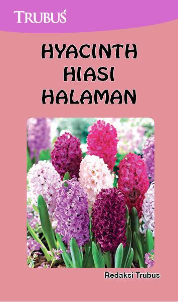 Hyacinth hiasi halaman [sumber elektronis]