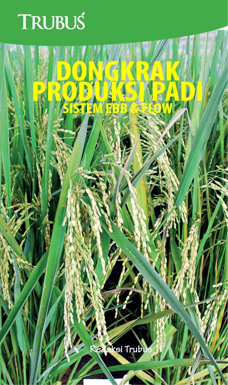 Dongkrak produksi padi [sumber elektronis] : sistem Ebb and Flow